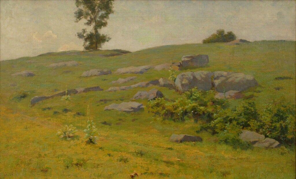 Hillside Boulders