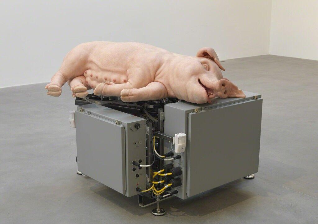 Mechanical Pig