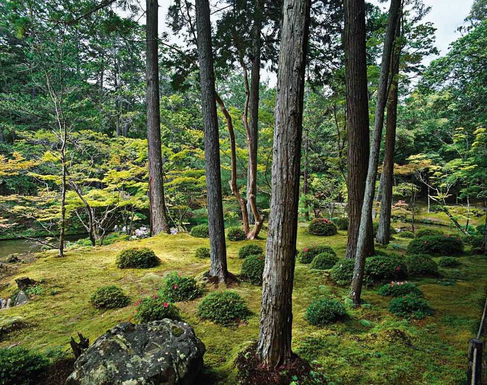 Saihō-ji 13, summer  Southwest Kyoto 30 May 2009 (13:00–15:00)