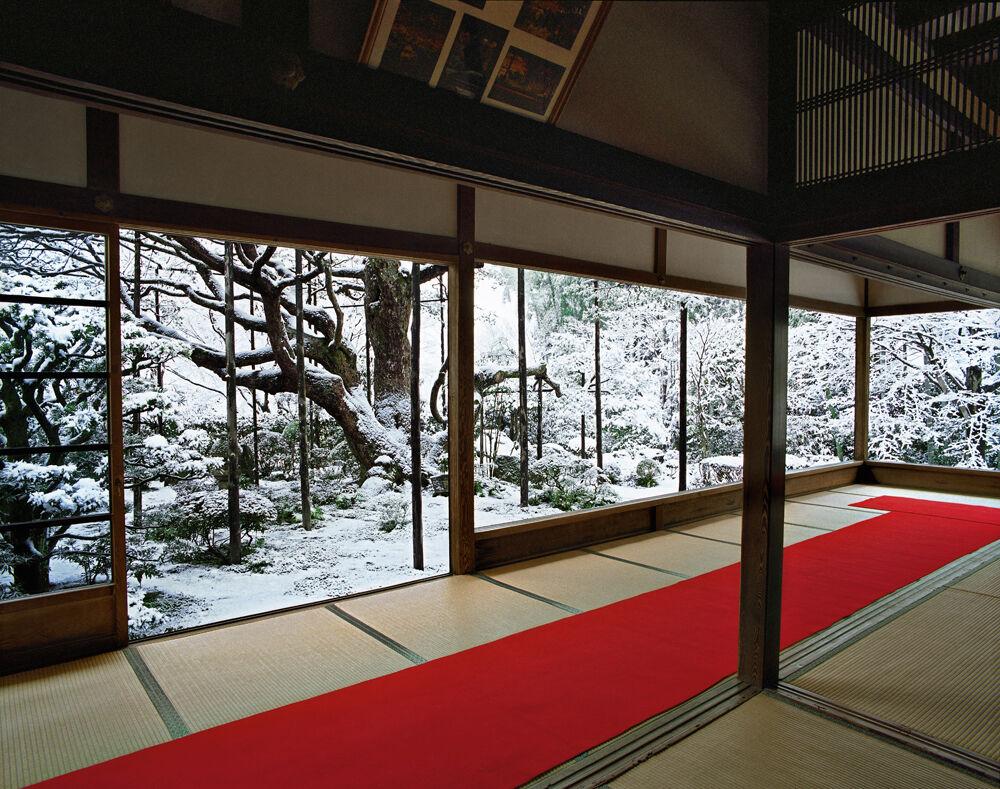 Hōsen-in 1, winter Northeast Kyoto 14 February 2011 (14:00–16:30)