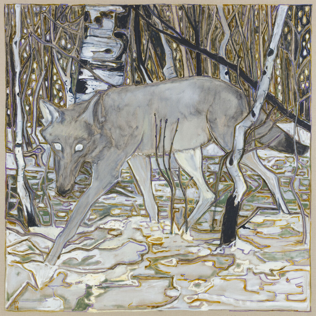 wolf in birch trees