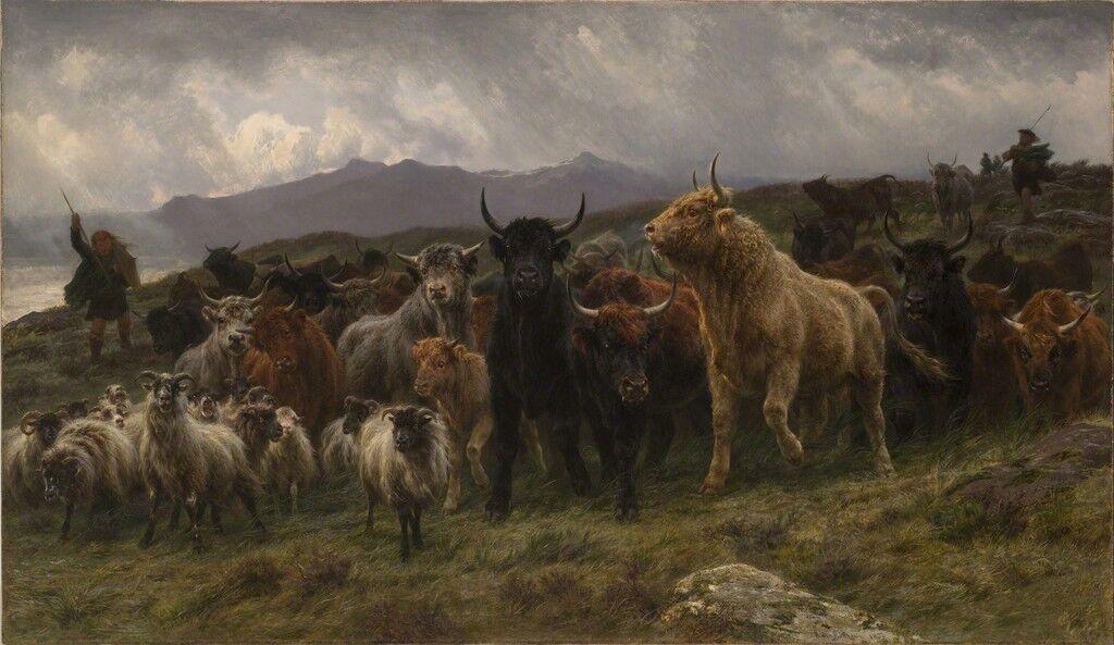 Highland Raid
