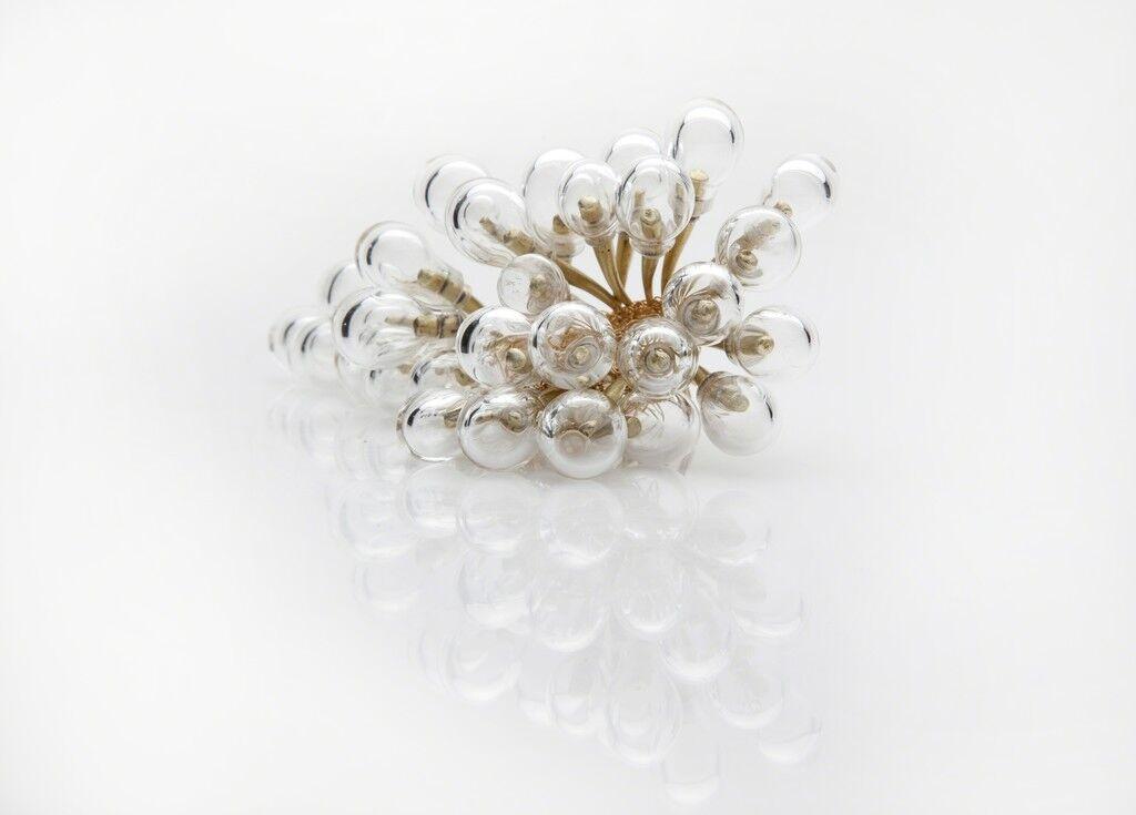 Summer Seeds Cluster of Perfume Vessels