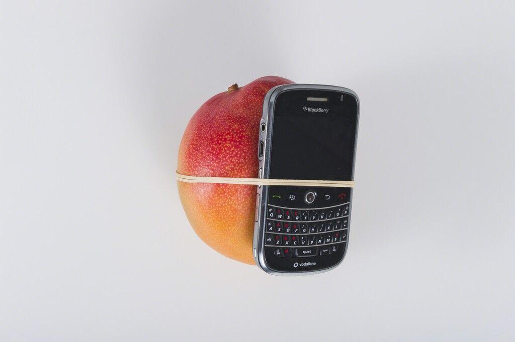 Miren el tamaño de este mango (Look at the size of this mango)