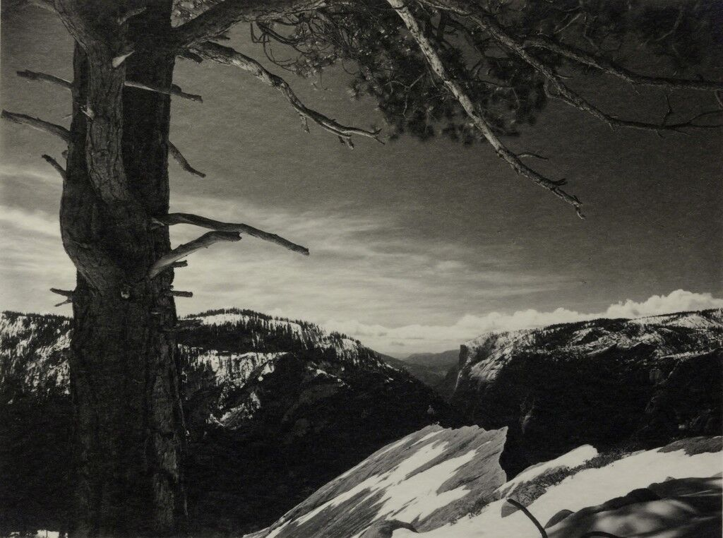 On the Heights, Yosemite National Park, CA