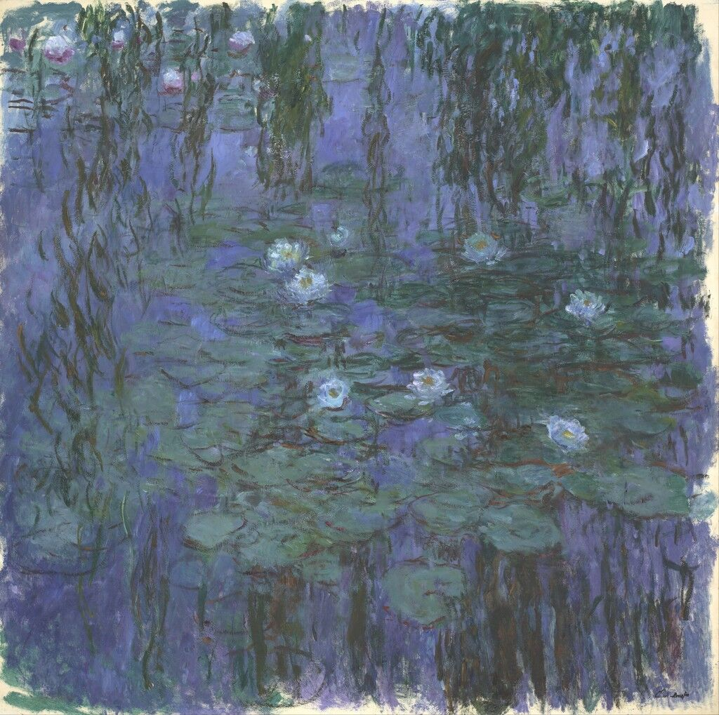 Blue Water Lilies