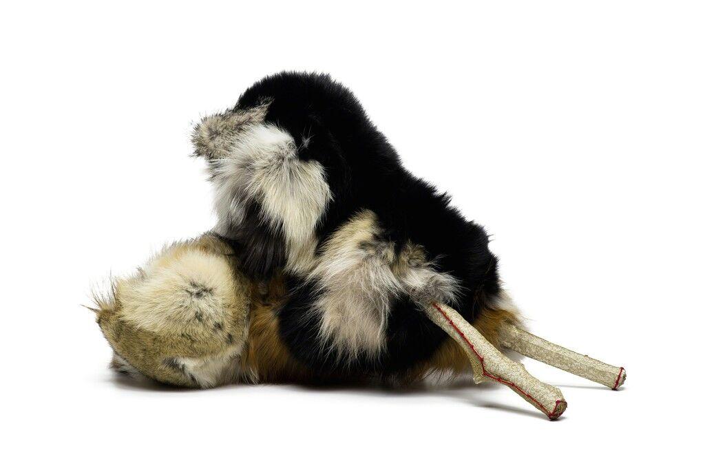 Gibberish: Fauna