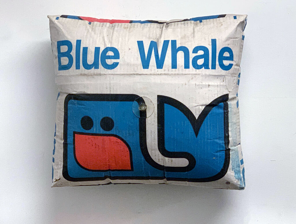 """Inflatable Cardboard Box (Blue Whale)"""