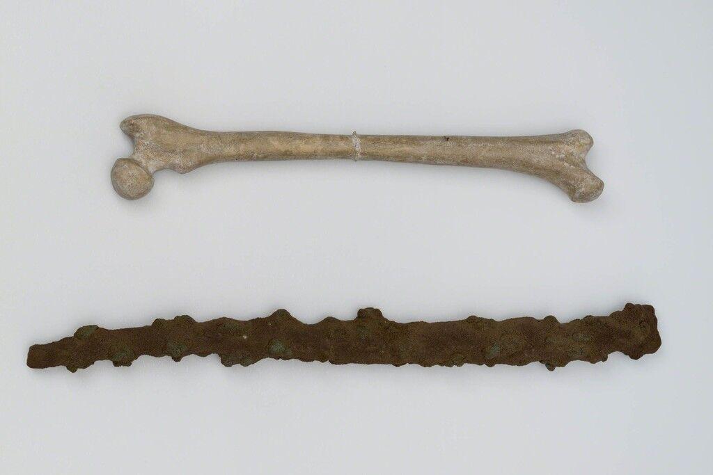 Trä och ben