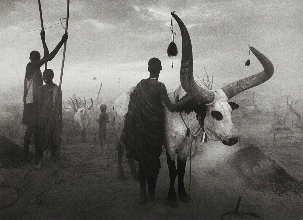 Dinka group at Pagarau, Southern Sudan, from the series Genesis