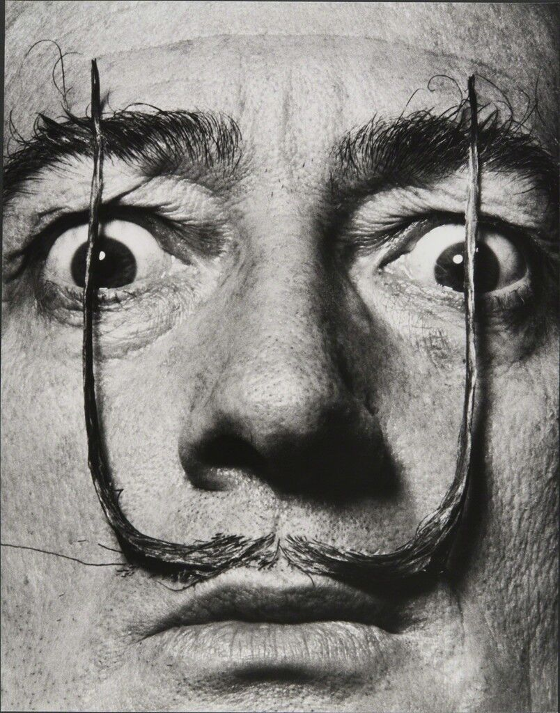 """Like two erect sentries, my mustache defends the entrance to my real self,"" Dalí's Mustache"