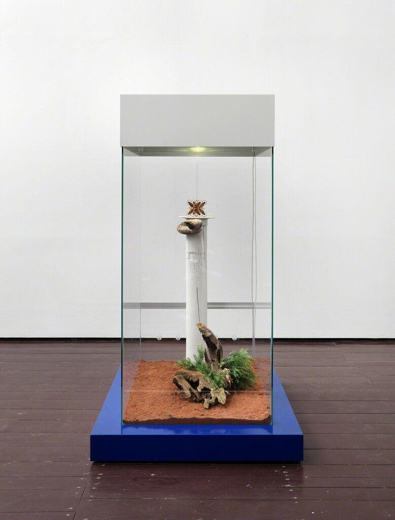 Rare Earth Sculptures (NEODYMIUM)