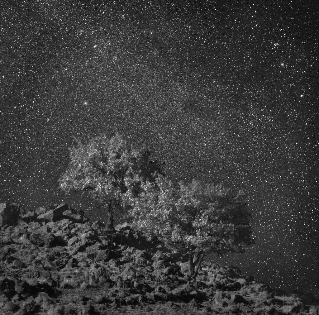 Channeling Ansel Adams, Neil Folberg Photographs the Stars
