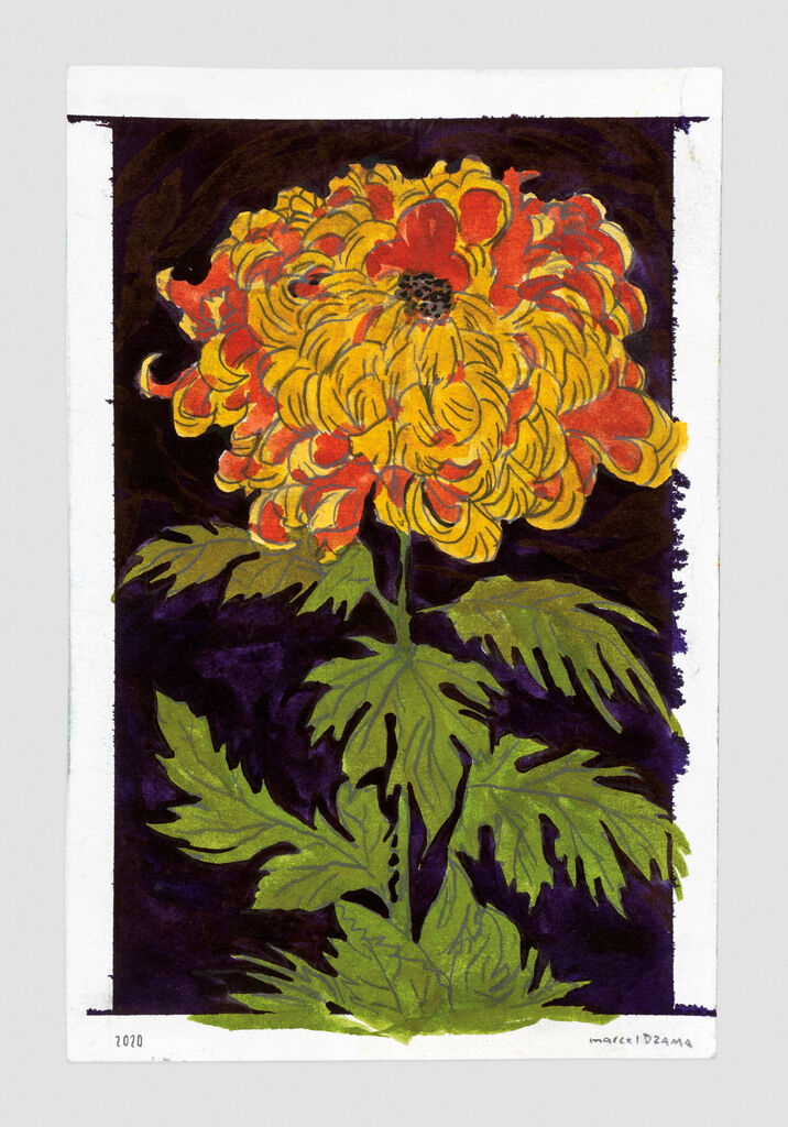 The flower of Fez
