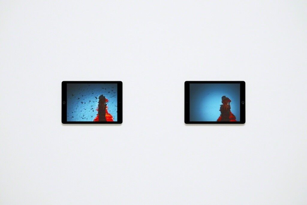Venezia, Images Shown on Two Apple iPad Air 2s
