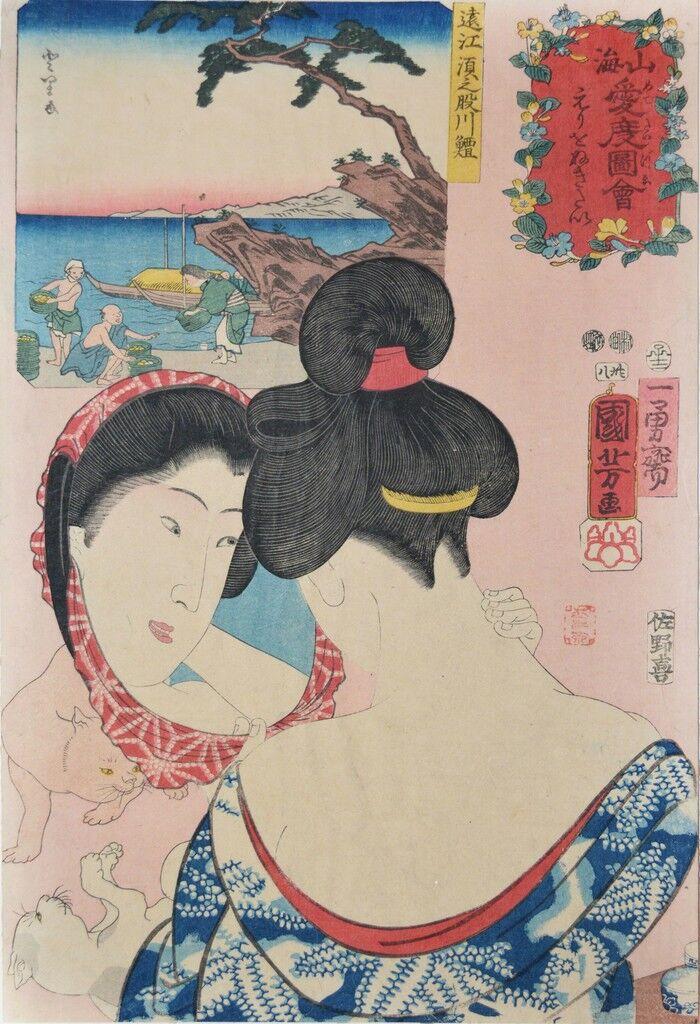 Gatos jugando: Sunomatagawafue en Totomi