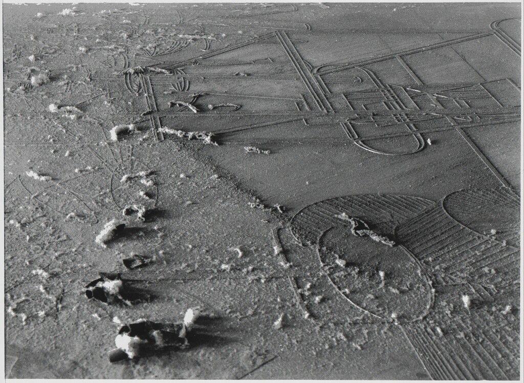 Dust Breeding (Dust over work by Marcel Duchamp)