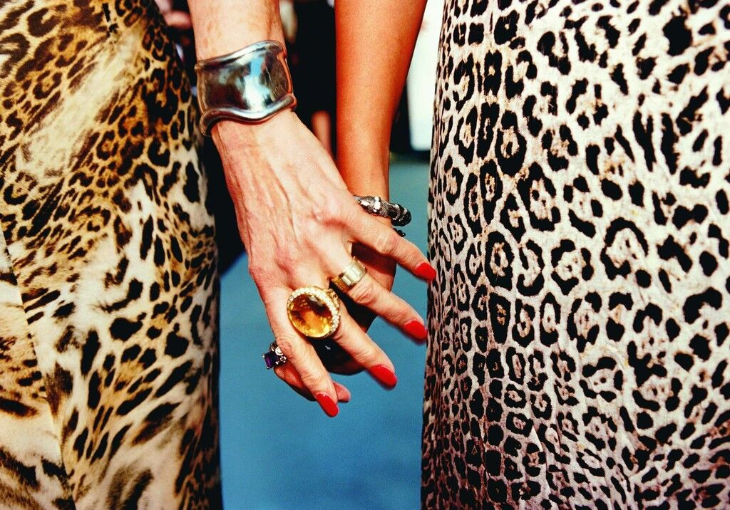 Cougar Friends (AmfAR Benefit, Cannes)