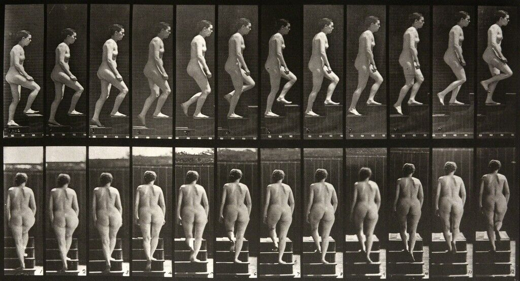 Animal Locomotion: Plate 92 (Nude Woman Ascending Staircase)