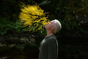 5 Lessons Creatives Can Learn from Andy Goldsworthy