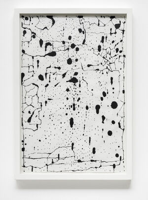 Brazilian Galleries & YMPs (Young Male Painters) Dominate at Art Basel Miami Week 2014