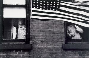 Americana: If You Love Robert Frank...