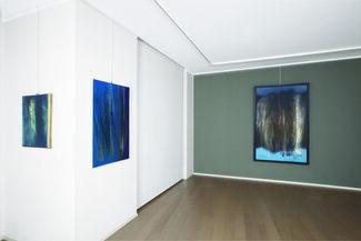 Hans Hartung, gli anni '60, installation view
