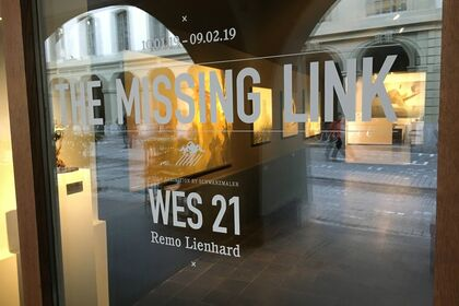 Remo Lienhard / Wes21 - The Missing Link