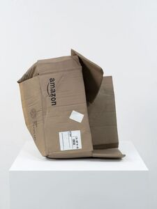 Untitled (Amazon Box)