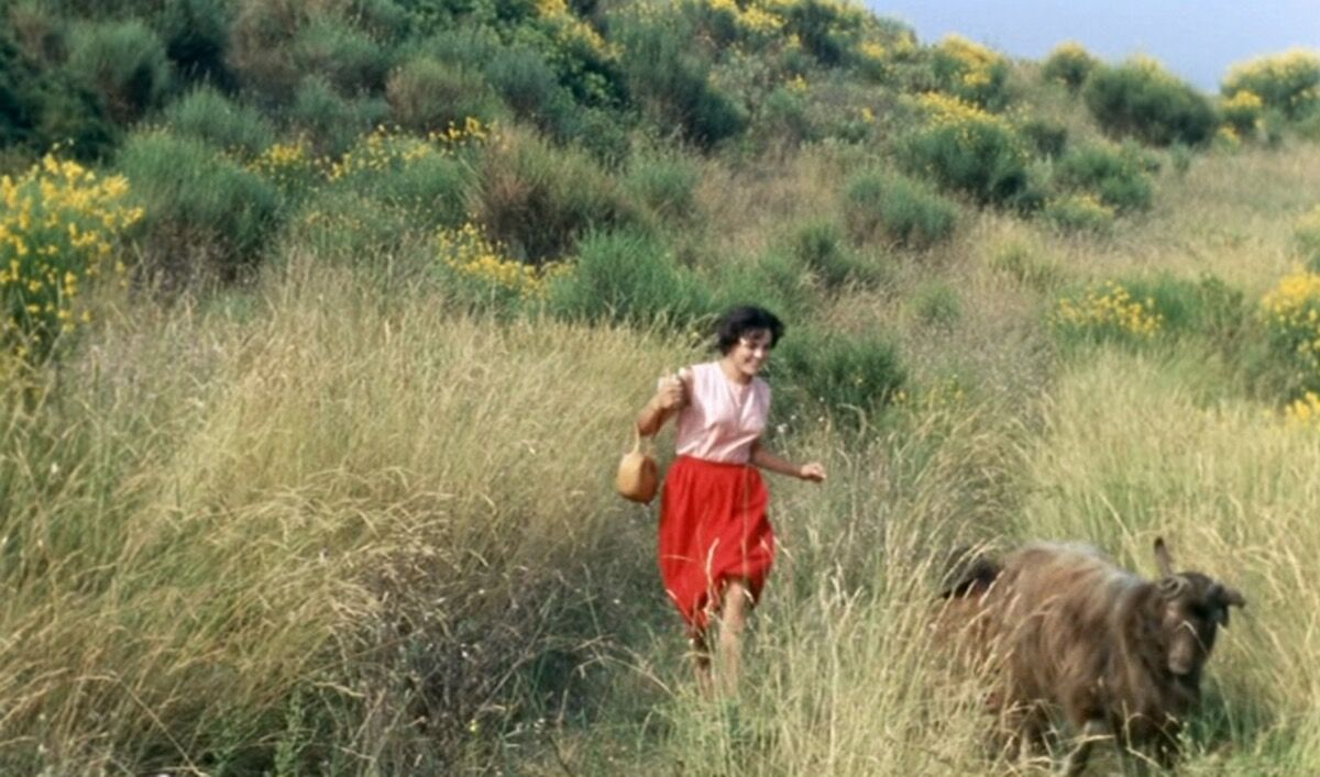 Still of Jean Renoir, Picnic on the grass (Le Déjeuner sur l'herbe), 1959. © STUDIOCANAL. Courtesy of The Barnes Foundation.